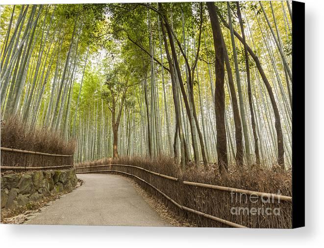 Arashiyama Canvas Print featuring the photograph Bamboo Forest Arashiyama Kyoto Japan by Colin and Linda McKie