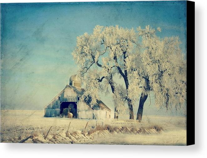 Barn Canvas Print featuring the photograph Barn Frosty Trees by Julie Hamilton