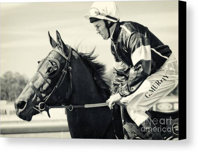 Equine Canvas Print featuring the photograph Barrier Bound by Simone Byrne Photography