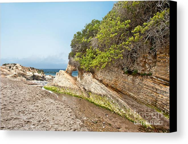 Ocean Canvas Print featuring the photograph Beach At Montana De Oro by Artist and Photographer Laura Wrede