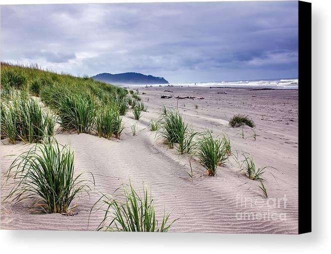 Pacific Ocean Canvas Print featuring the photograph Beach Grass by Robert Bales