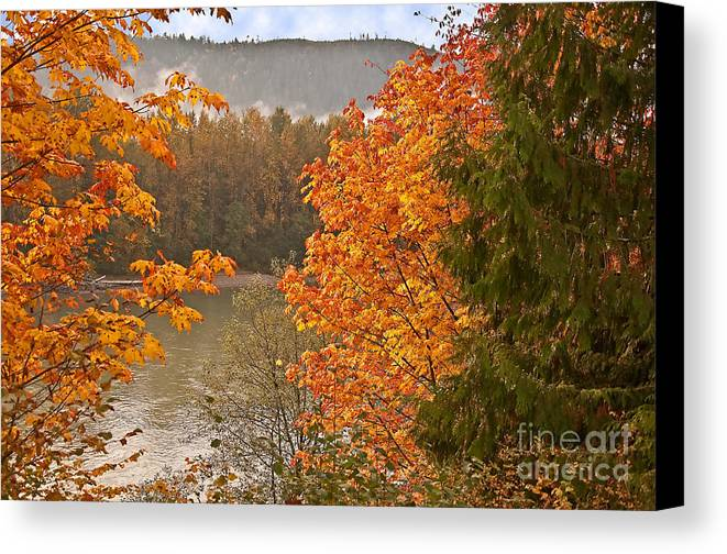 Landscape Canvas Print featuring the photograph Beautiful Autumn Gold Art Prints by Valerie Garner