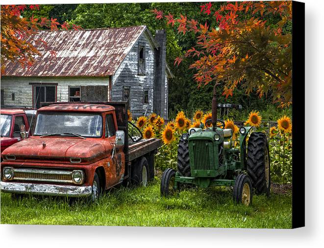 Appalachia Canvas Print featuring the photograph Best Friends by Debra and Dave Vanderlaan