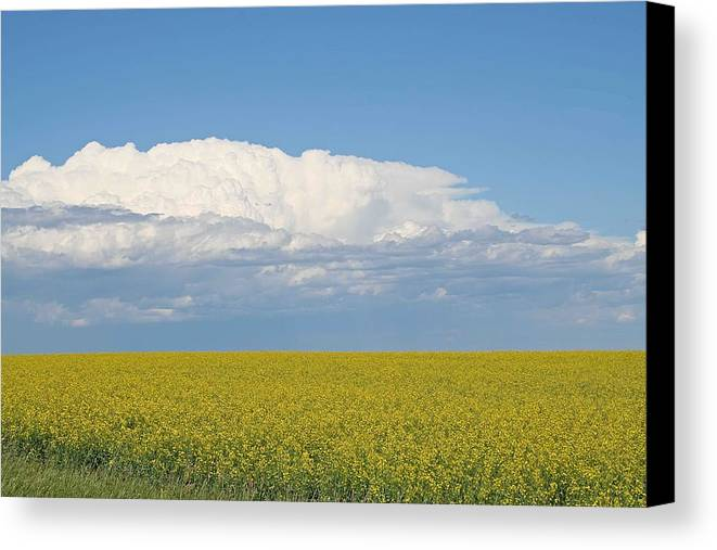 Nature Canvas Print featuring the photograph Beyond The Horizon by Frank Luxford
