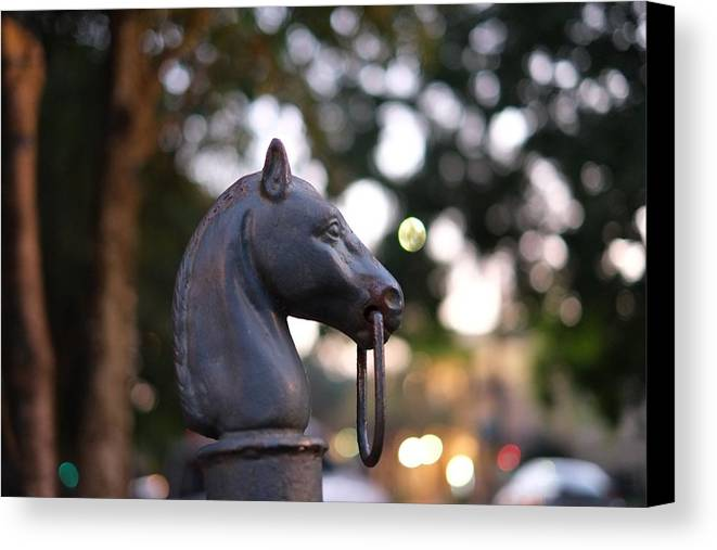 Horse Canvas Print featuring the photograph Binding Post 11 by Jason Horne
