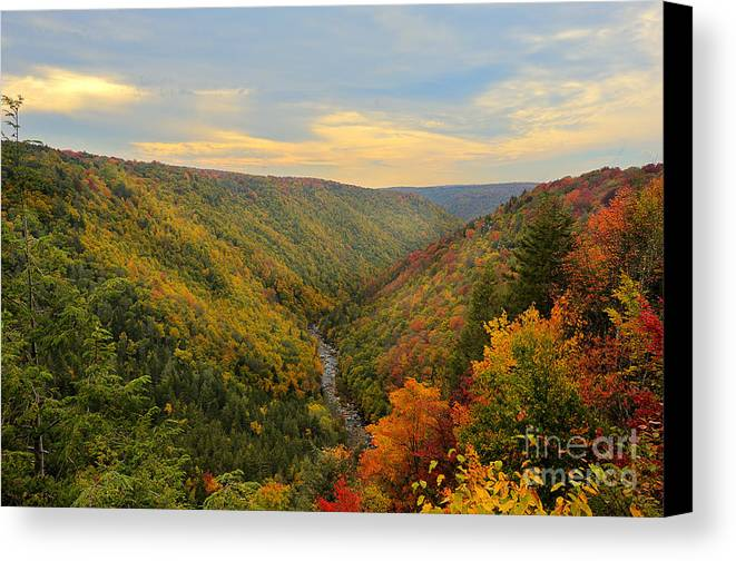 Blackwater Canvas Print featuring the photograph Blackwater Gorge With Fall Leaves by Dan Friend