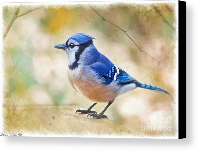 Bird Canvas Print featuring the photograph Blue Jay - Digtial Paint by Debbie Portwood