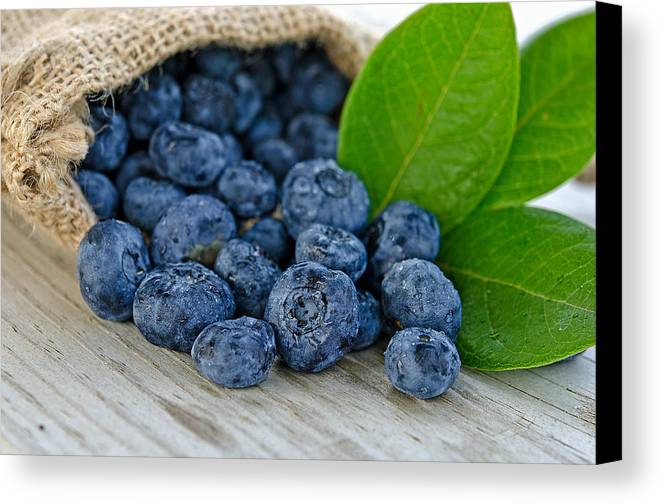 Blueberry Canvas Print featuring the photograph Blueberries by Maria Dryfhout