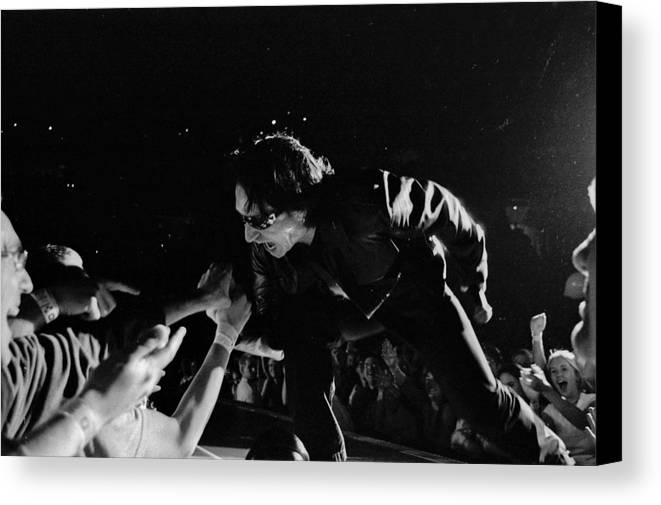 Bono Canvas Print featuring the photograph Bono 051 by Timothy Bischoff