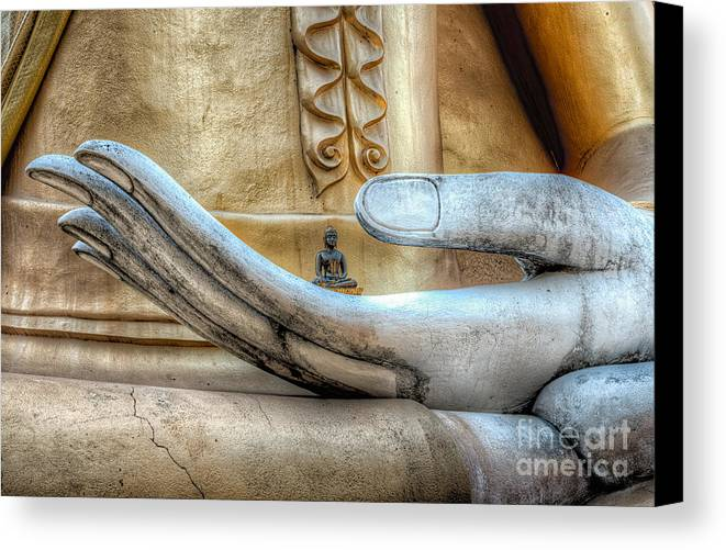 Buddha Canvas Print featuring the photograph Buddha's Hand by Adrian Evans