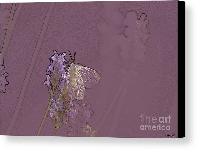 Butterfly Canvas Print featuring the digital art Butterfly 1 by Carol Lynch