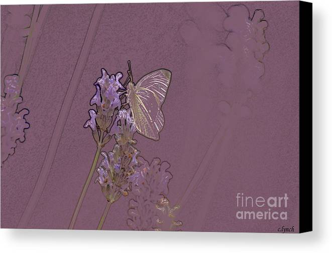 Butterfly Canvas Print featuring the digital art Butterfly 2 by Carol Lynch