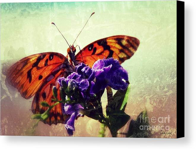 Butterfly Kissed Canvas Print featuring the photograph Butterfly Kissed by Darla Wood