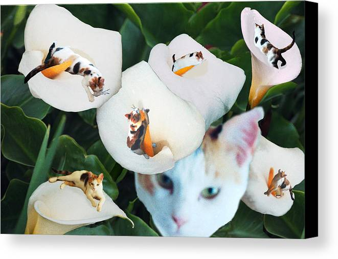Cat Canvas Print featuring the digital art Cala In Callas by Lisa Yount
