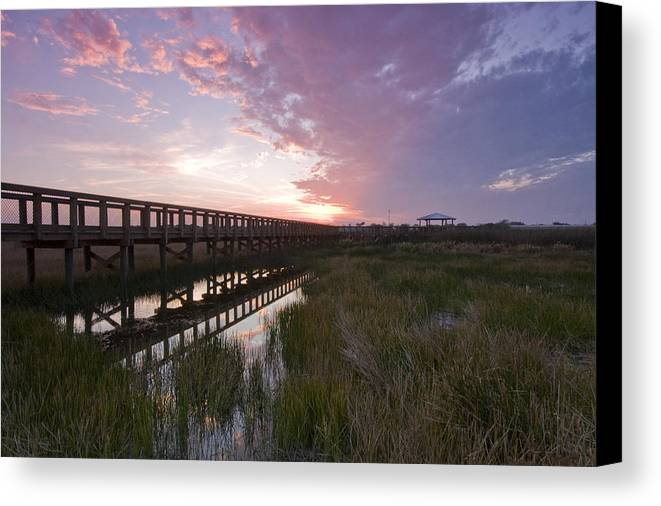 Sarasota Canvas Print featuring the photograph Celery Fields Sunset by Sandy Swanson