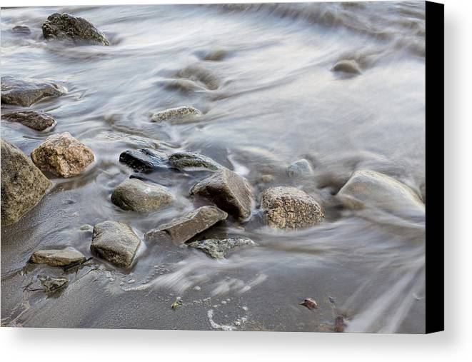 Andrew Pacheco Canvas Print featuring the photograph Clinging To The Shore by Andrew Pacheco