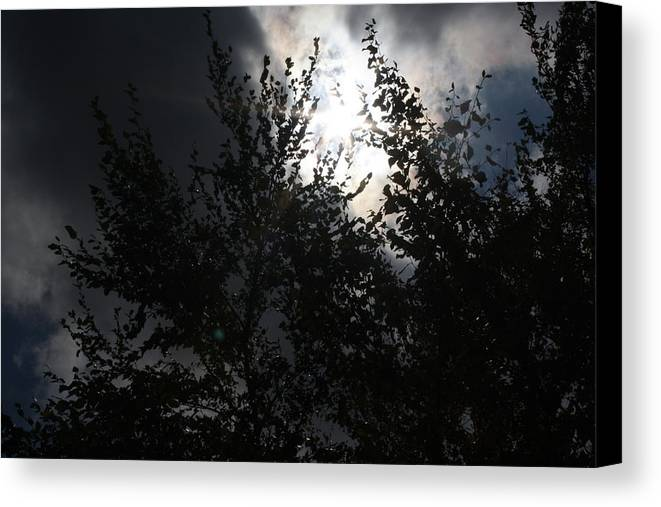 Landscape Canvas Print featuring the photograph Cloudy by Catherine Dunn