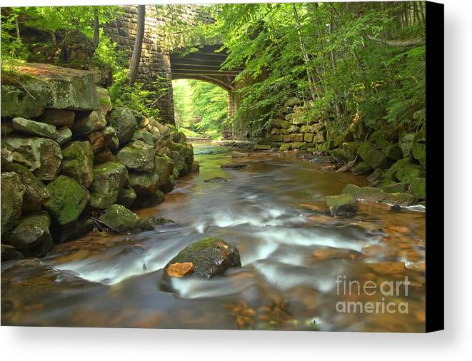 Toms Run Canvas Print featuring the photograph Cook Forest Stream Under The Bridge by Adam Jewell