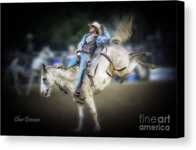 Rodeo Canvas Print featuring the photograph Cooper Rodeo Bronc Rider by Char Doonan