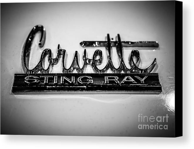 1960's Canvas Print featuring the photograph Corvette Sting Ray Emblem by Paul Velgos