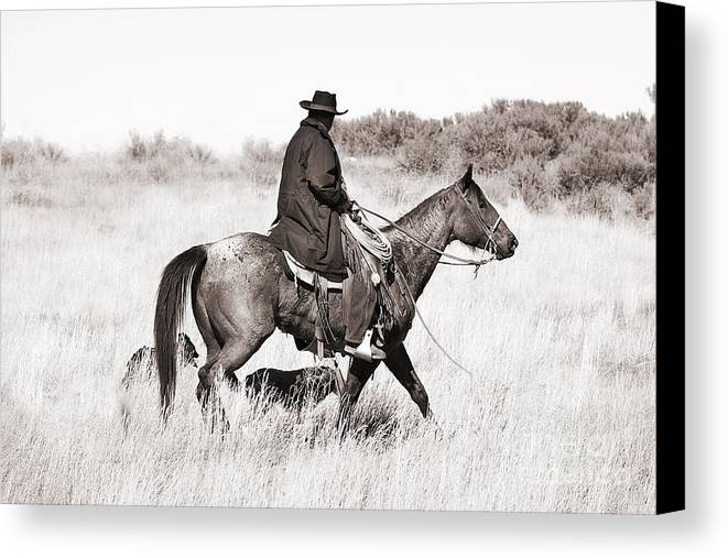 Cowboy Canvas Print featuring the photograph Cowboy And Dogs by Cindy Singleton