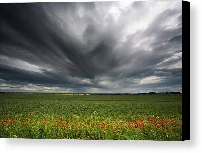 Flower Canvas Print featuring the photograph Dark Storm Clouds Over A Field With Red by John Short
