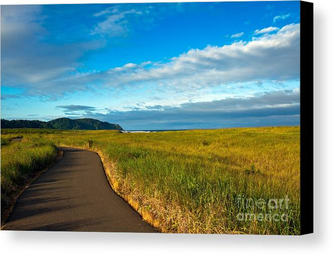 Pacific Ocean Canvas Print featuring the photograph Discovery Trail by Robert Bales