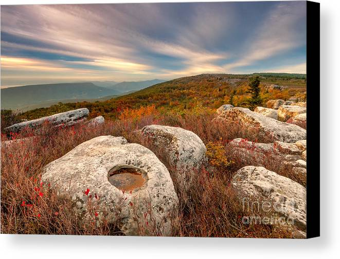 Dolly Sods Canvas Print featuring the photograph Dolly Sods Wilderness D30019870 by Kevin Funk