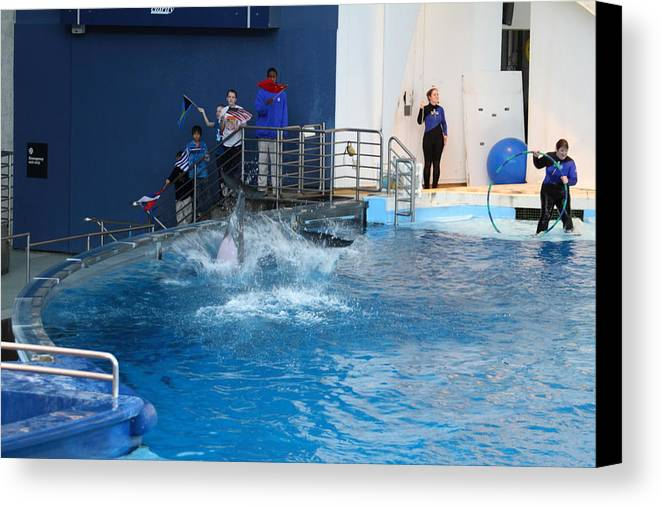 Inner Canvas Print featuring the photograph Dolphin Show - National Aquarium In Baltimore Md - 121292 by DC Photographer