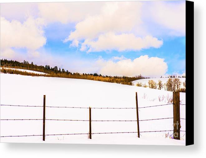 Dreamtime Canvas Print featuring the photograph Dreamtime by Sandi Mikuse