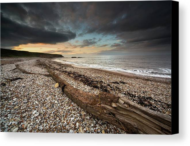 Cloud Canvas Print featuring the photograph Driftwood Laying On The Gravel Beach by John Short