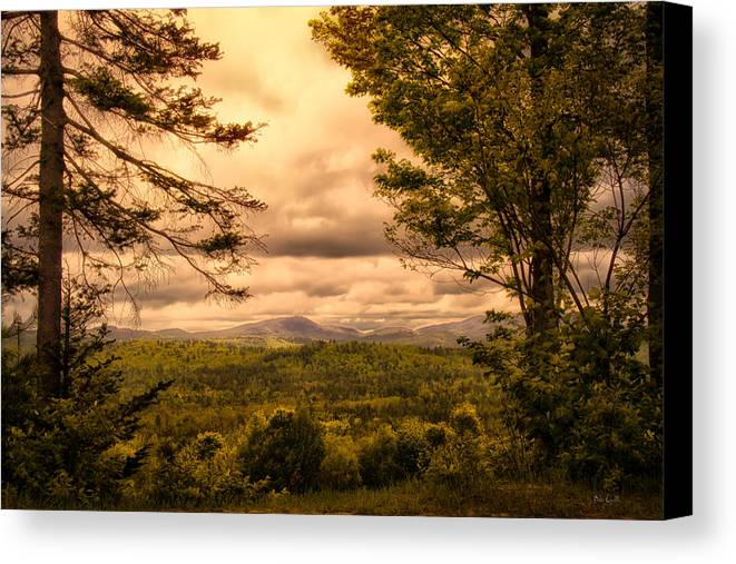 Appalachian Trail Canvas Print featuring the photograph Early Spring Rain by Bob Orsillo