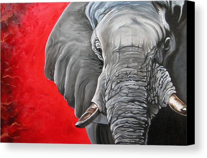 Wildlife Canvas Print featuring the painting Elephant by Ilse Kleyn