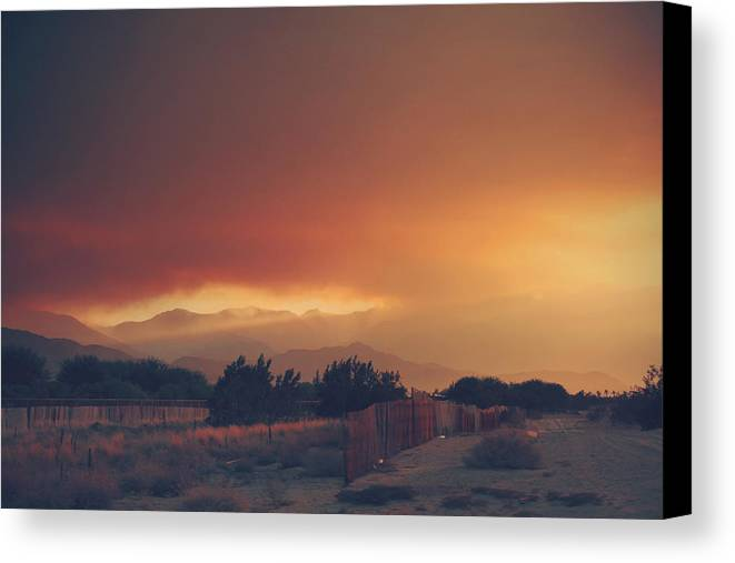 Palm Desert Canvas Print featuring the photograph Even Now by Laurie Search