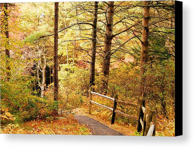 Autumn Canvas Print featuring the photograph Fall Foliage In New England by Staci Bigelow