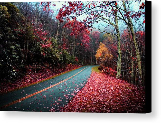 Fall Canvas Print featuring the photograph Fall Road by Kevin Cable