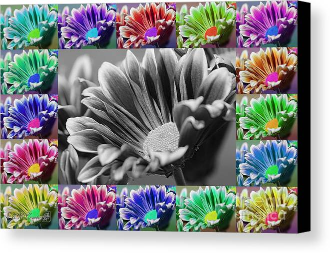 Mccombie Canvas Print featuring the digital art Firmenish Bicolor In All Shades by J McCombie