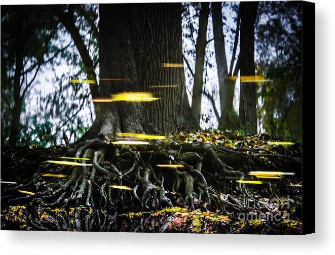 Defiance Canvas Print featuring the photograph Floating Away On A Reflection by Michael Arend