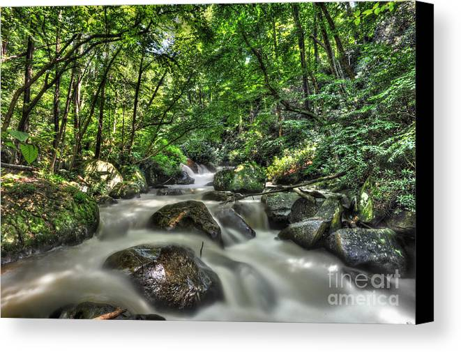Kayak Canvas Print featuring the photograph Flooded Small Stream by Dan Friend