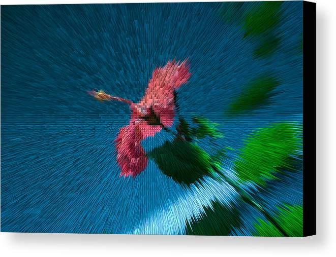 Flower Canvas Print featuring the photograph Flower In Space by Melvin Busch