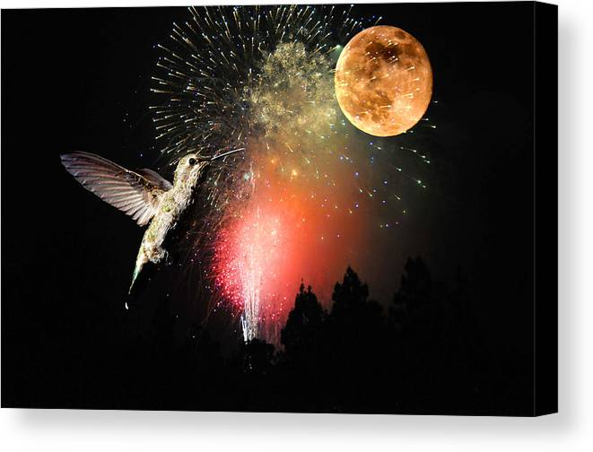 Moon Canvas Print featuring the photograph Fly Me To The Moon by Lynn Bauer