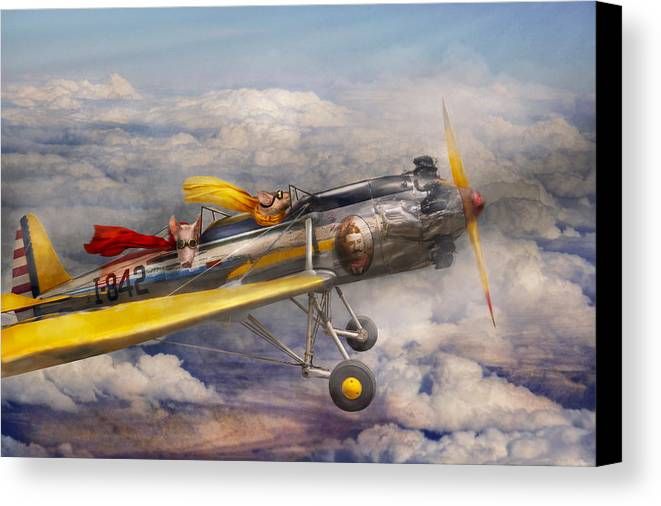 Pig Canvas Print featuring the photograph Flying Pig - Plane - The Joy Ride by Mike Savad