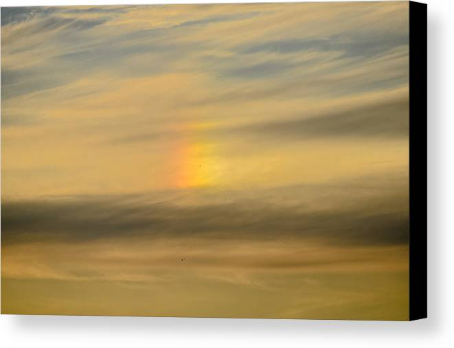 Bird Canvas Print featuring the photograph Flying Through The Rainbow by Ronda Broatch