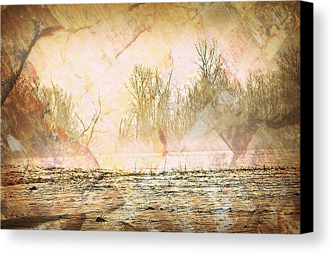 Landscape Canvas Print featuring the photograph Fog Abstract 4 by Marty Koch