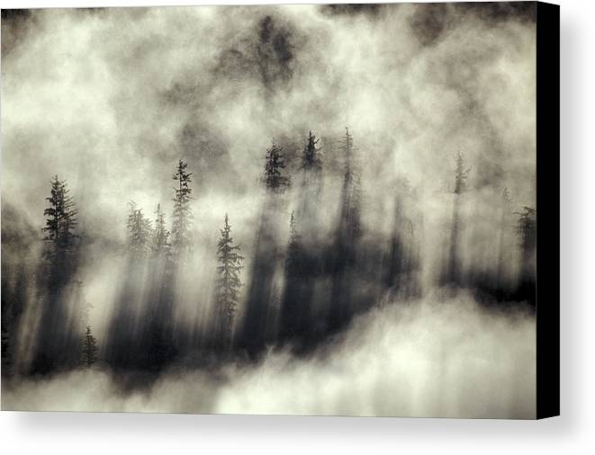 Moody Canvas Print featuring the photograph Foggy Landscape Stephens Passage by Ron Sanford