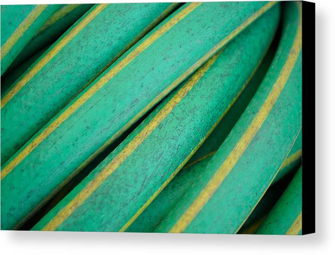 Abstract Canvas Print featuring the photograph Garden Hose by Kathryn Blevins