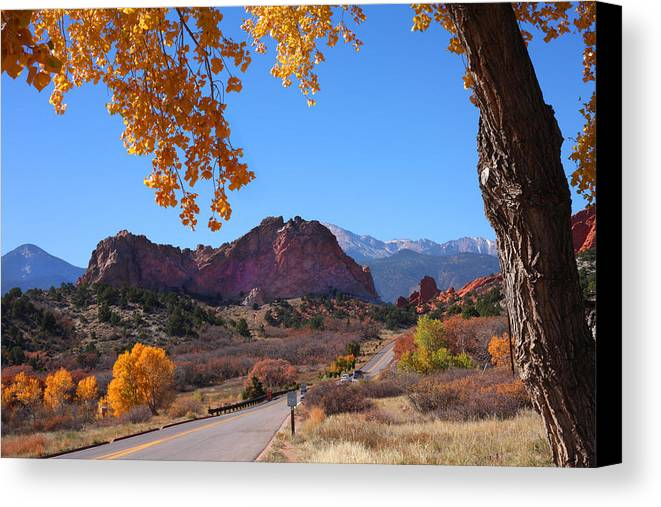 Garden Of The Gods Canvas Print featuring the photograph Glory Road by Mike Flynn