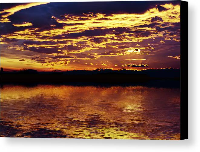 Canvas Print featuring the photograph Golden Day by Dan Lavric