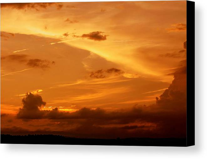 Golden Canvas Print featuring the photograph Golden Sunset by Frank Selvage