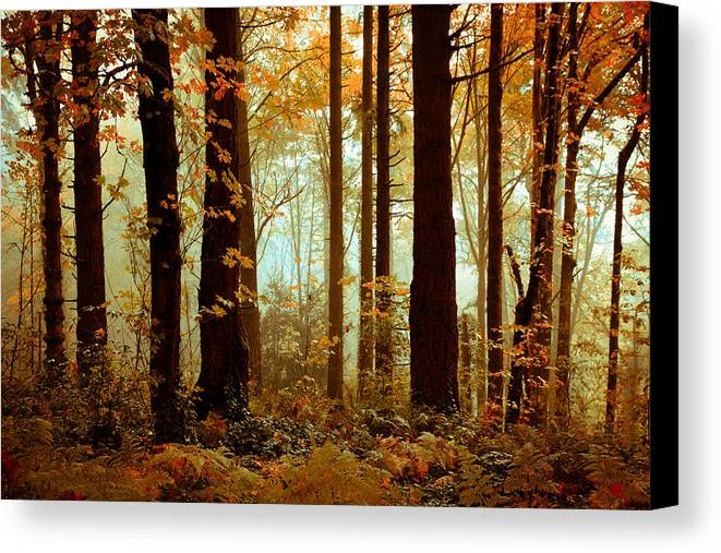 Trees Canvas Print featuring the photograph Golden Trees by Athena Mckinzie
